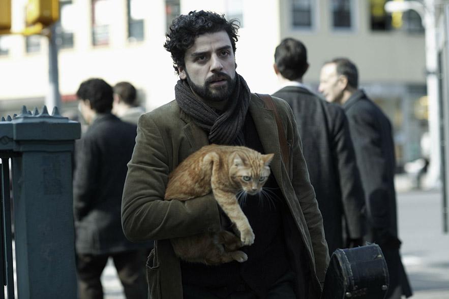 Llweyn Davis and his cat.
